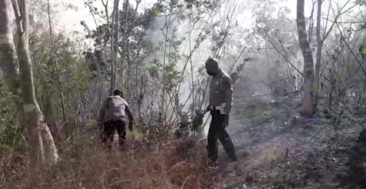 Marak Sistem Tebas Bakar, Polsek Miotim Turun Padamkan Api dan Beri Edukasi